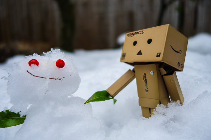 Everyone loves Danbo