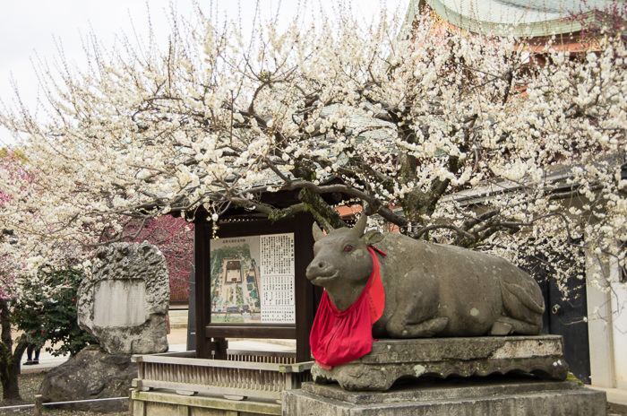 A statue of cow and plum blossoms